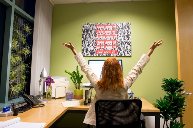 benefits of having succulent plants in the office